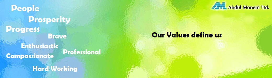 Values cover photo